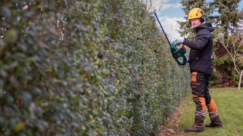 HomeBob tilbyder hækklipning i Jyllinge