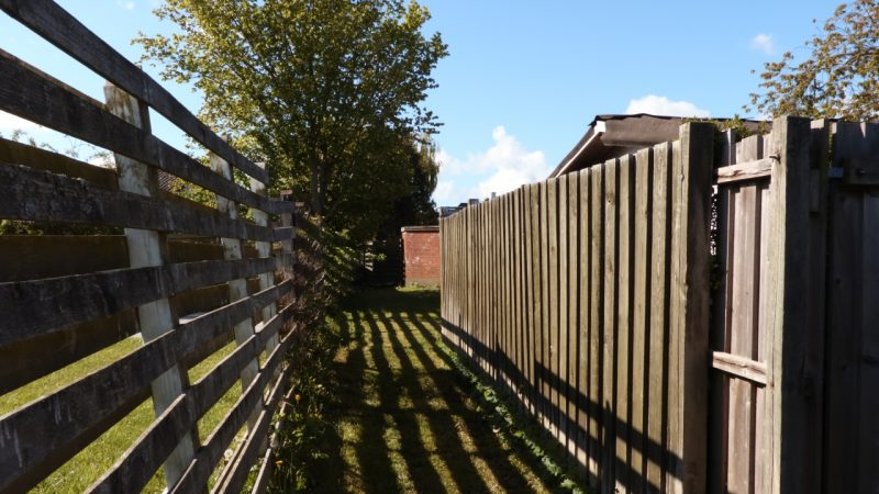 Når en pris på træfældning udregnes afhænger også af adgangsforholdene