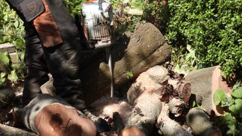 I prisen på træfældning kan der også indregnes bortskaffelse af grenaffald