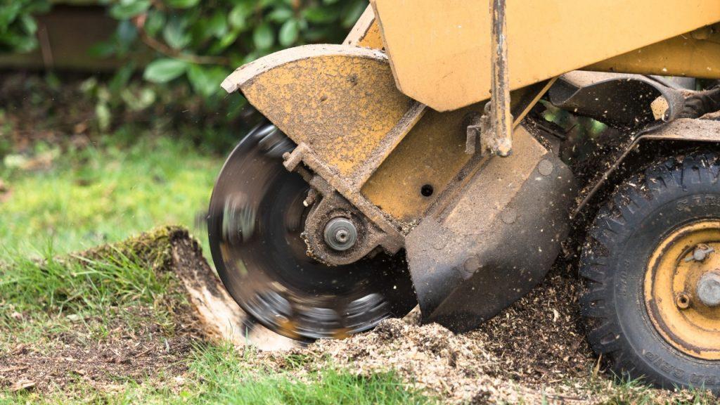 En stubfræser en en effektiv måde at få fjernet en stub på.