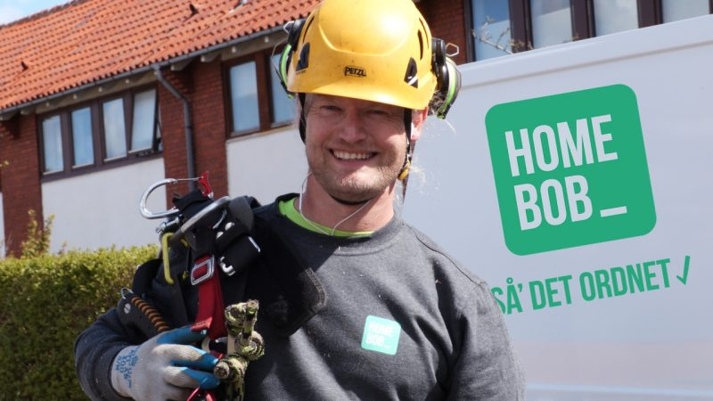 HomeBob tilbyder træfældning i Nordsjælland og Storkobenhavn