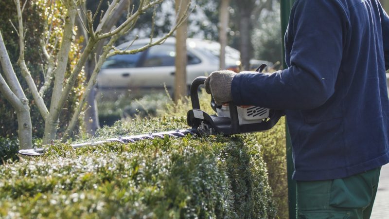 Hækklipning i Hørsholm er noget HomeBob hjælper husejere med